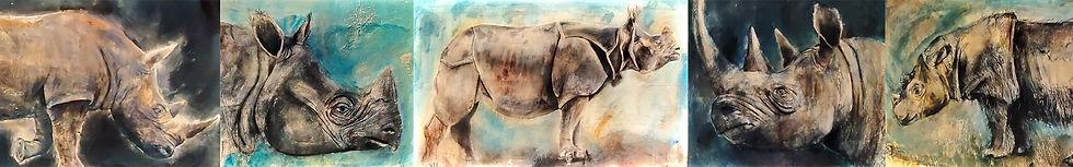 Rhino Comp_jpg.jpg