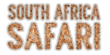 South Africa Safari Text_png.png