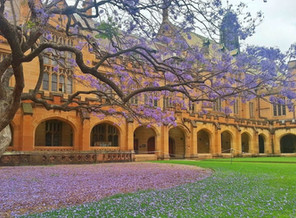 New Community Management course at University of Sydney