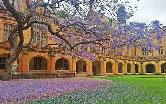 University_of_Sydney.jpg