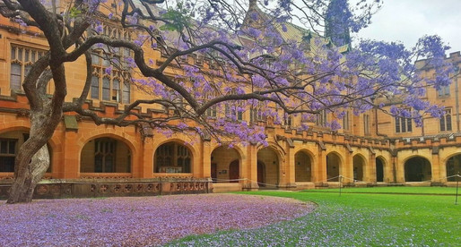 New Community Management course at University of Sydney