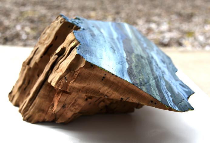 Óleo sobre tronco nativo del sur de Chile