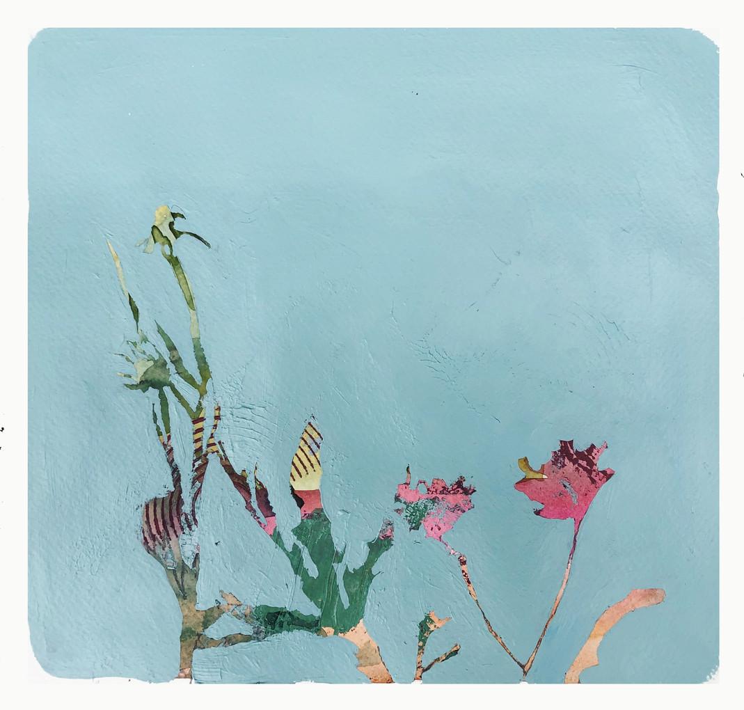 Botánico 6, Acuarela y acrílico sobre papel, 28 x 29 cm. 2019