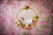 IMG_1660kakou2-1-1.jpg