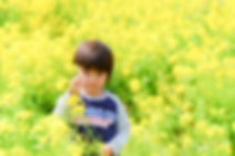 S__61317138.jpg
