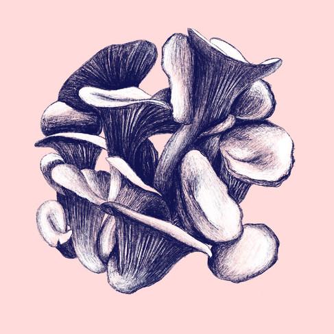Fungus Study #2, 2019