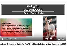 Rococo 7ième toutes races.jpg