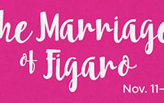 Le Nozze di Figaro (Stephen Lawless, Director)