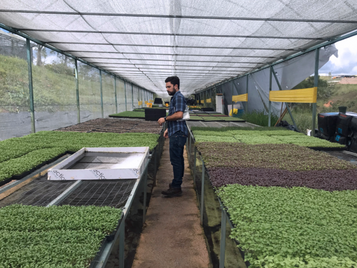 PRoduce Raises $1.8M In Capital To Boost Support of Small Farmers
