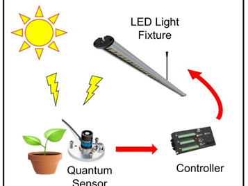 Precision Control of Supplemental Lighting