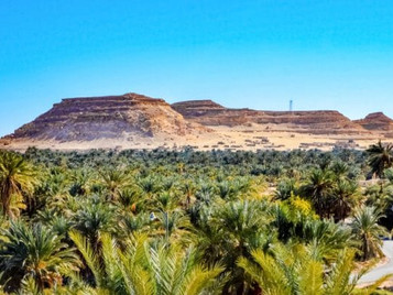 EGYPT: Azelio To Install 20 Energy Storage Units For Green Agriculture