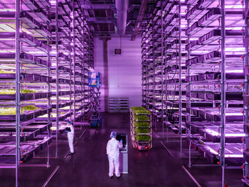 Inside Europe's Largest Vertical Farm