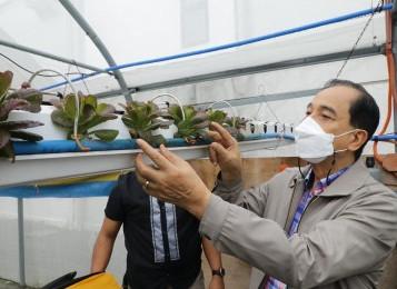 DA, Partner Push Urban Farm School To Modernize Agriculture
