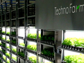 Spread Wins Vertical Farming World Award For The Outstanding Performance Of Its Next Generation Food