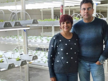 College Reunion Inspires Farming Startup, Duo Grow 70kg Soilless Veggies Per Month