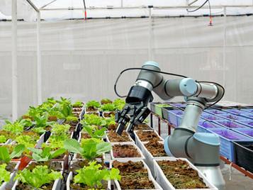 Robotic Arm Helps Grow Hydroponic Plants