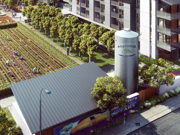 """""""Agrihood"""" Puts A Farm In The Center of Silicon Valley Housing"""