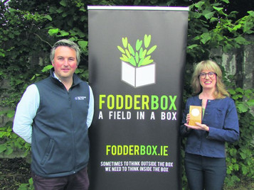 'Field In A Box' Technology Can Reduce Farm Costs And Improve Cow Health