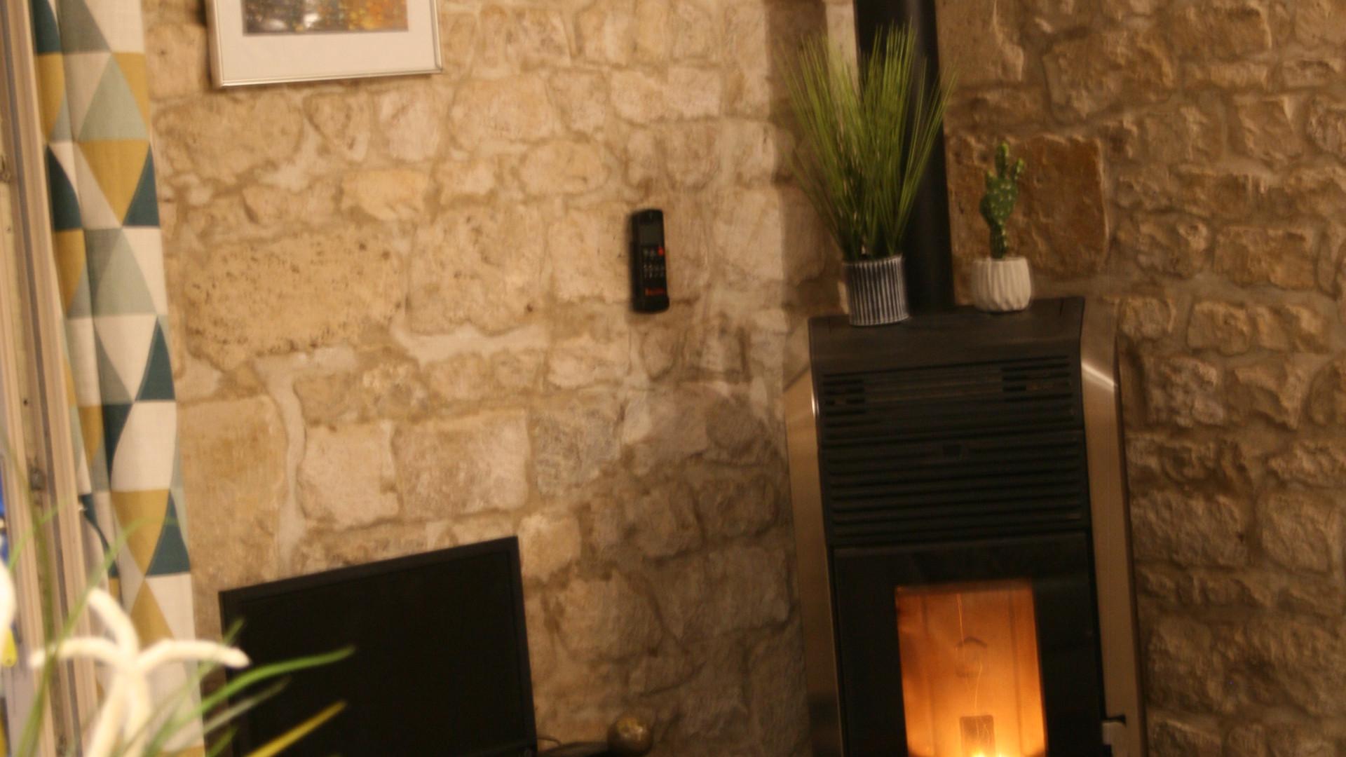 Wood pellet burner