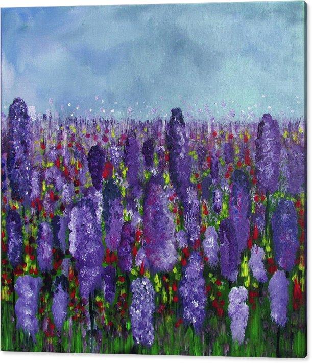 lavenderfield-patricia-piotrak-canvas-pr
