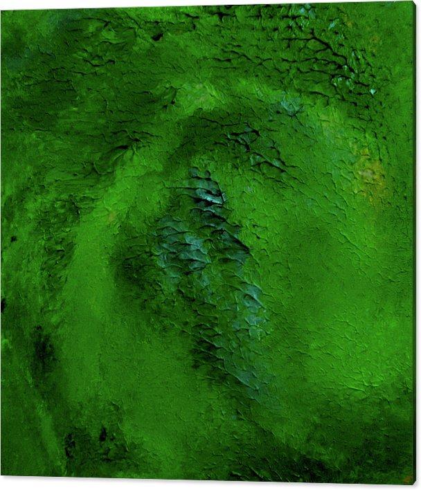 green-drakeskin-patricia-piotrak-canvas-