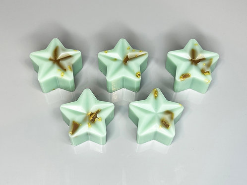 Mint Choc Chip | Pack of 5