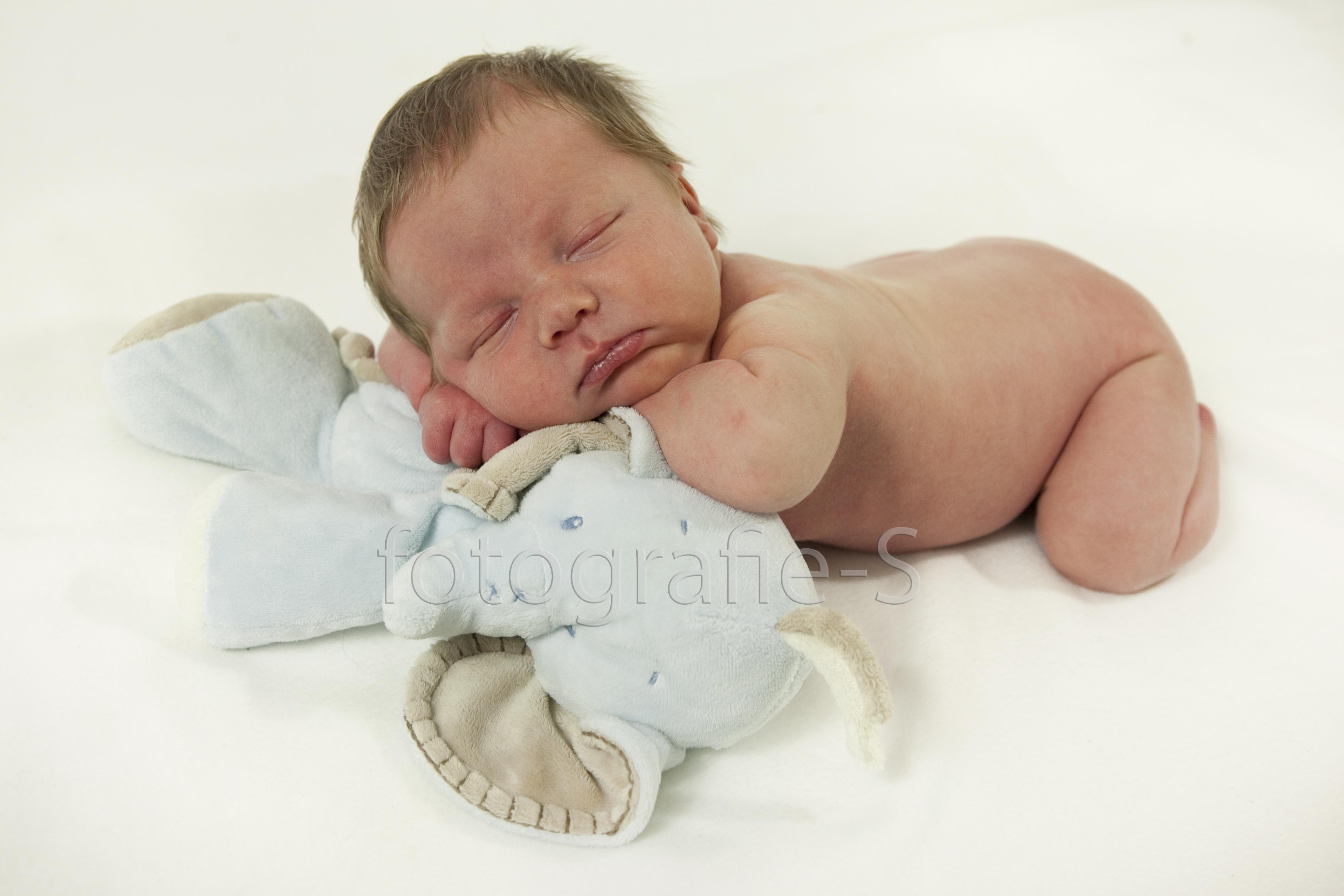 Newborn baby portret fotograaf