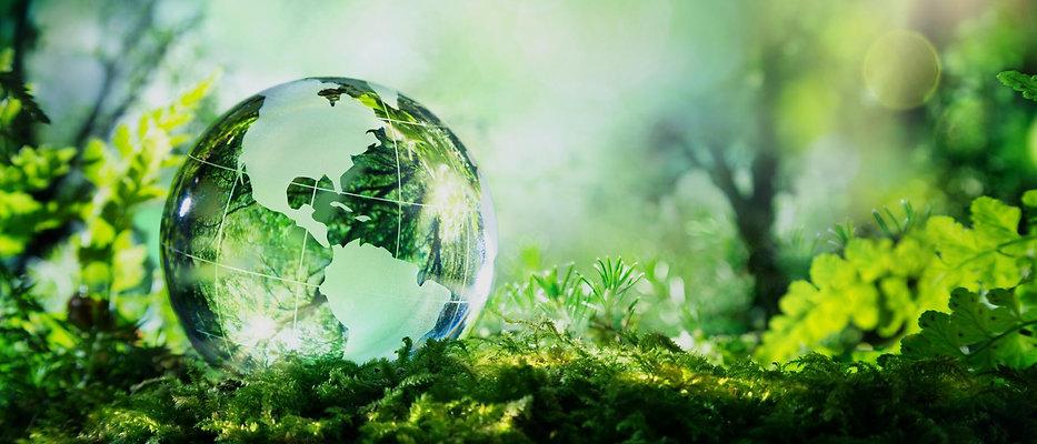 global-environmental-footprint.jpg