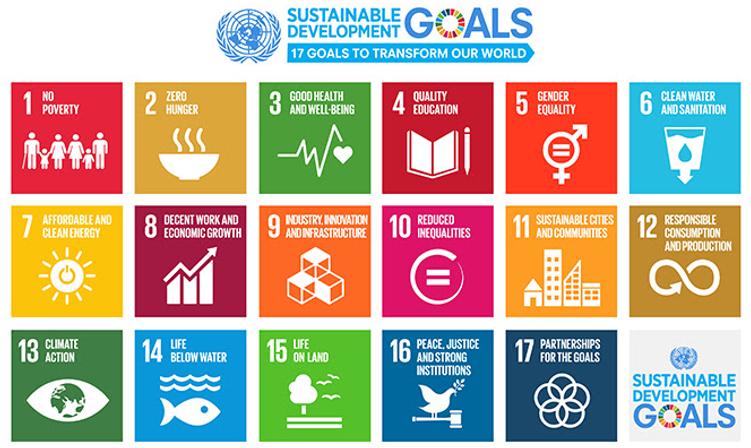 UN-Sustainable-Development-Goals.png