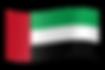 UAE flag-.png