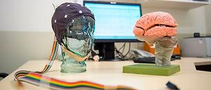 neurosciences1.jpg