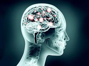 Brain-neuroscience.jpg