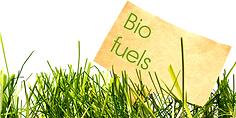 Bio-fuels.png