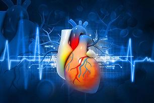 Heart+atrial+fibrillation.jpg