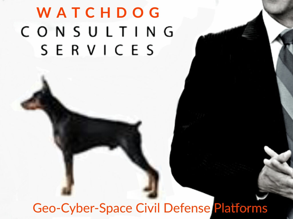 Watchdog Consulting Service