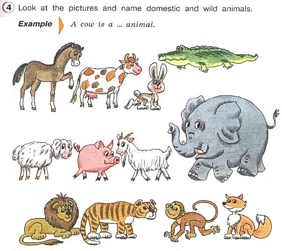 Domestic wild animals Верещагина аудио 3 класс урок 46 упражнение 4