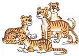 английский язык верещагиной. Exercise 4, tigers. 3 класс, урок 2, упр 4