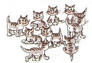 английский язык верещагиной. Exercise 4, cats. 3 класс, урок 2, упр 4