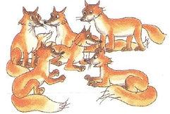 английский язык верещагиной. Exercise 4, foxes. 3 класс, урок 2, упр 4