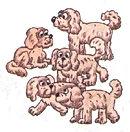 английский язык верещагиной. Exercise 4, dogs. 3 класс, урок 2, упр 4