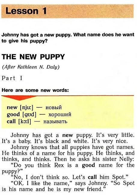 верещагина английский язык 3 класс reader. The new puppy. Part 1. Рисунок. 3 класс. reader book. Урок 1.