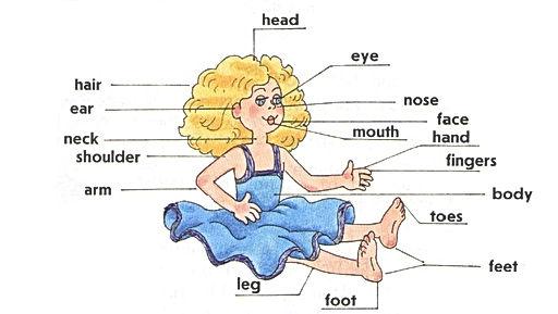 Верещагина 2 часть урок 46 упражнение 12 Гдз Верещагиной 3 классу учебнику