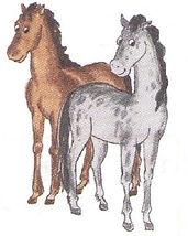 английский язык верещагиной. Exercise 4, horses. 3 класс, урок 2, упр 4