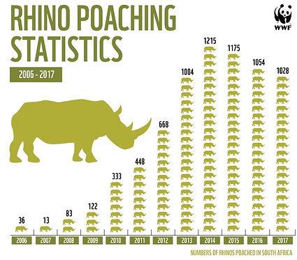 rhino-2-wwf.jpg