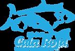 2020 Cula girl shirt logo.png
