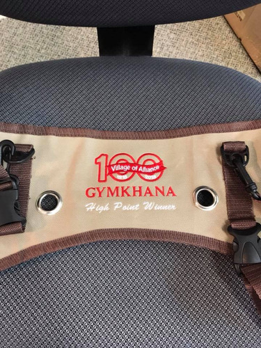 Saddle Bag Embroidery.jpg