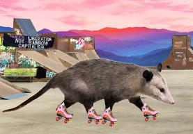 skaterposs.jpg