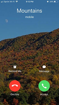 callingscreenshot.jpg