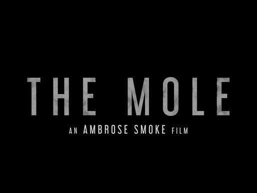 The Mole Official Trailer  (directed by Ambrose Smoke)