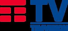 TIMvision_-_Logo_2019.svg.png